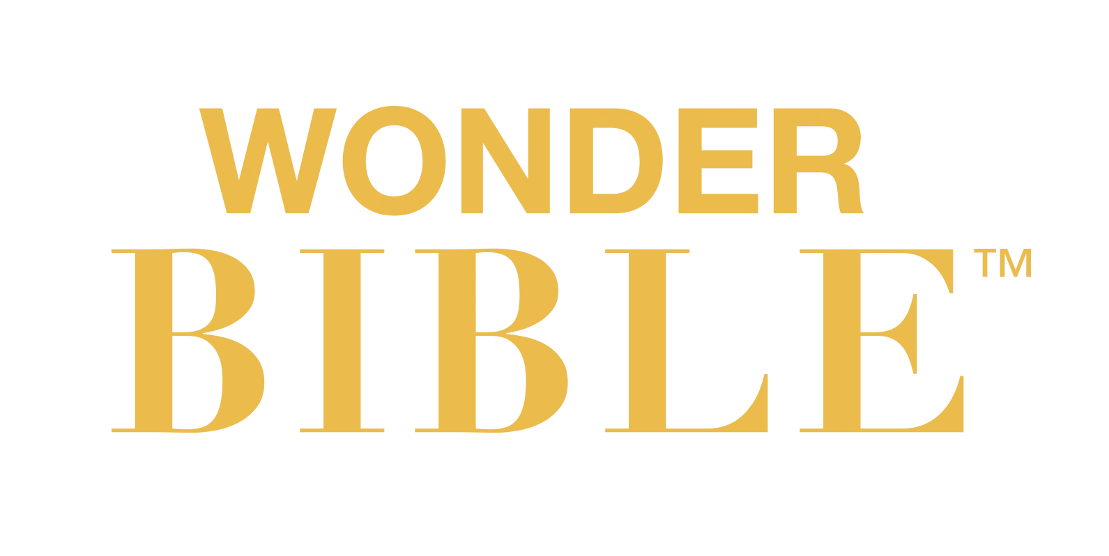 Chapter Code Guide | Wonder Bible Tips Site