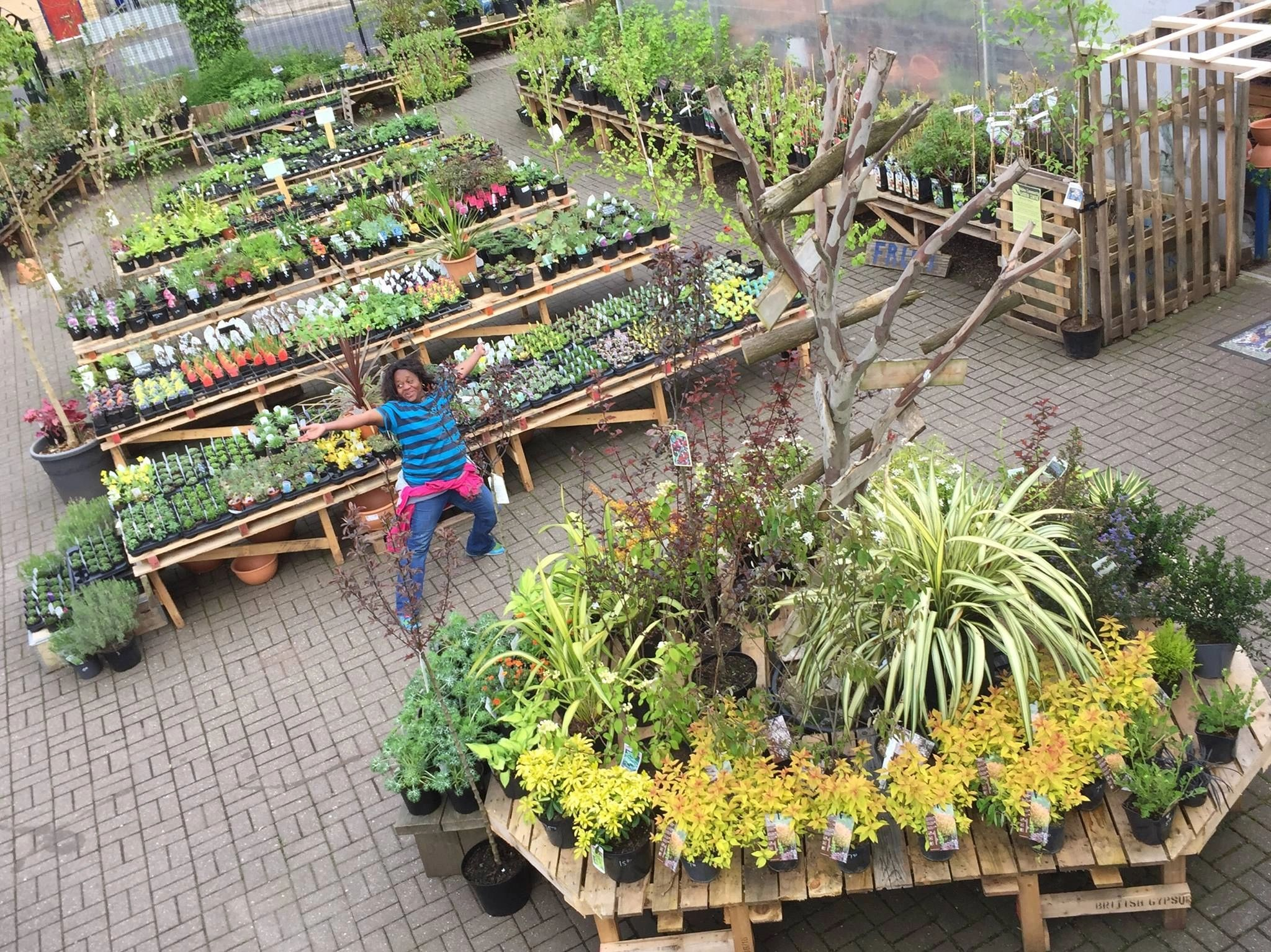 Education and training hulme community garden centre for Gardening classes near me