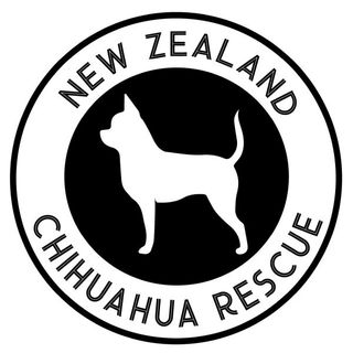 New Zealand Chihuahua Rescue
