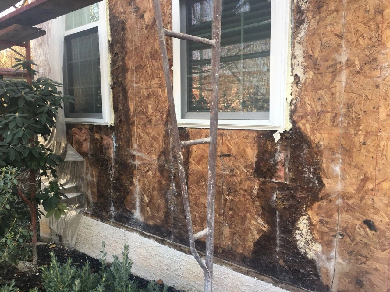 Chimney Management Remediation Done Right