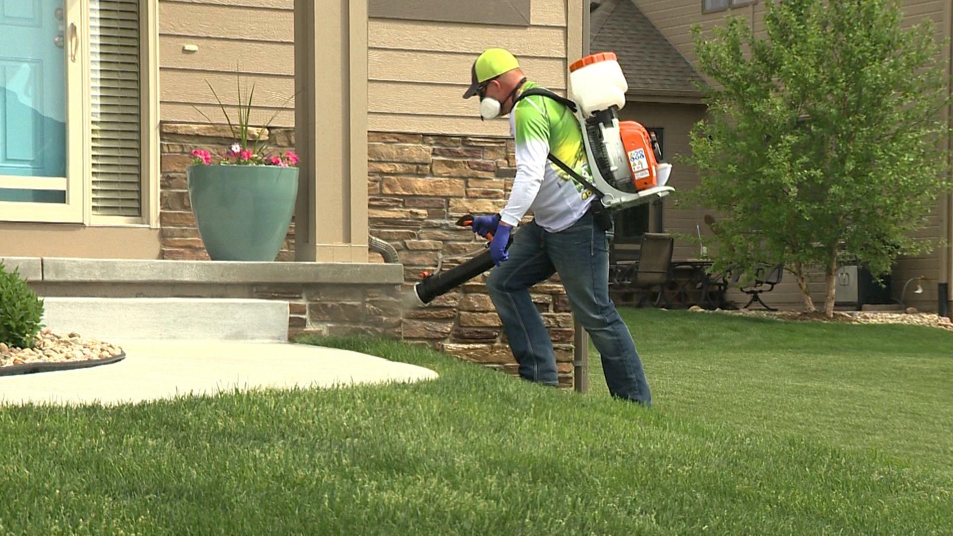 Pest Control & Bed Bug Exterminator Omaha NE | Ryan's Pest Solutions