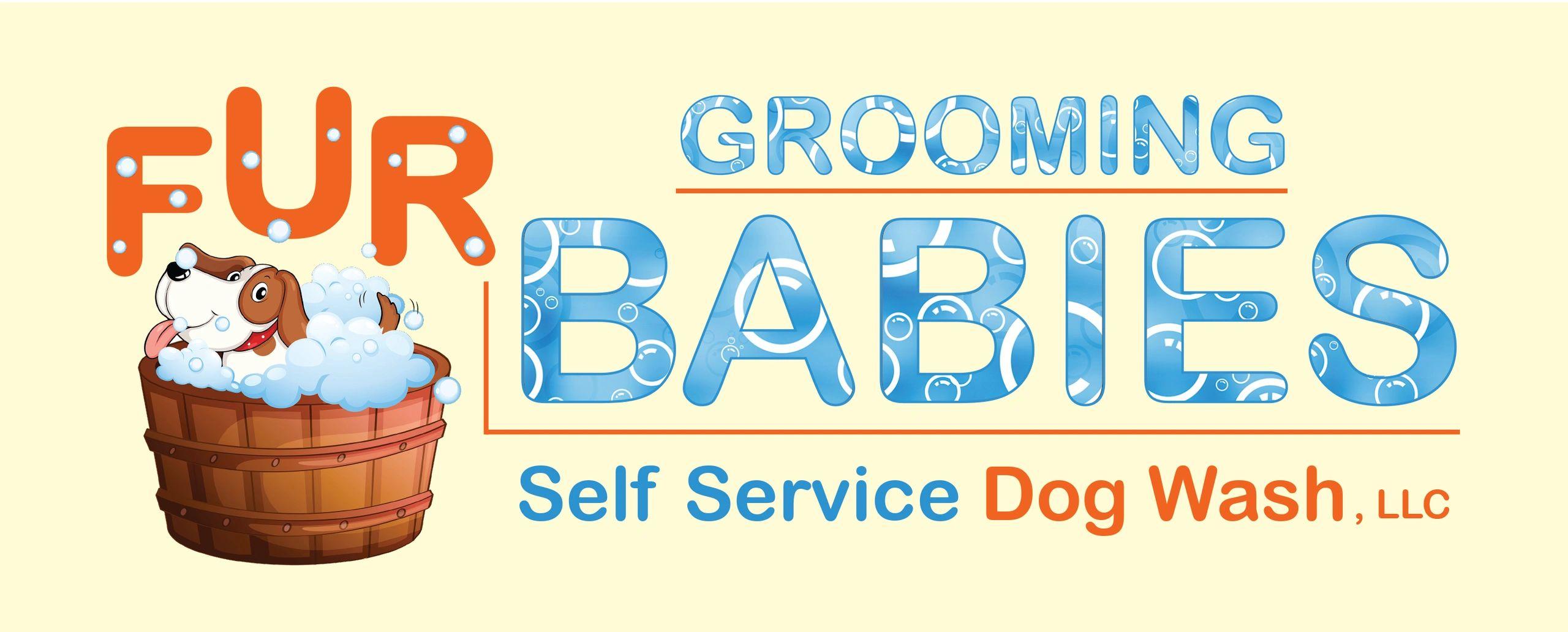 Fur babies self service dog washllc grooming self wash dog fur fur babies self service dog washllc grooming self wash dog fur babies self service dog washllc solutioingenieria Image collections