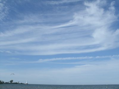 Cirrus clouds curve across the sky over the Erie Shore