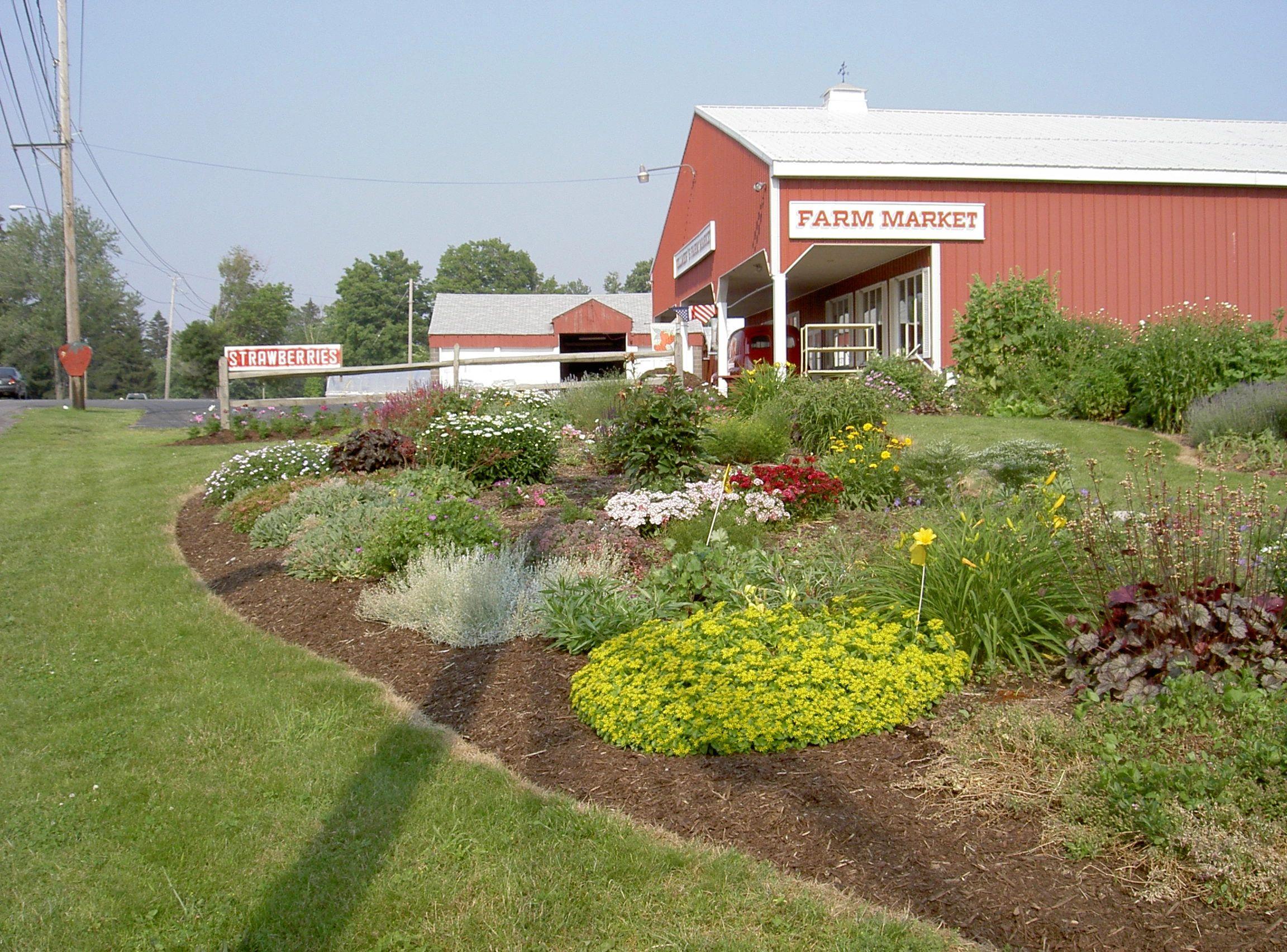 Vollmer Farms