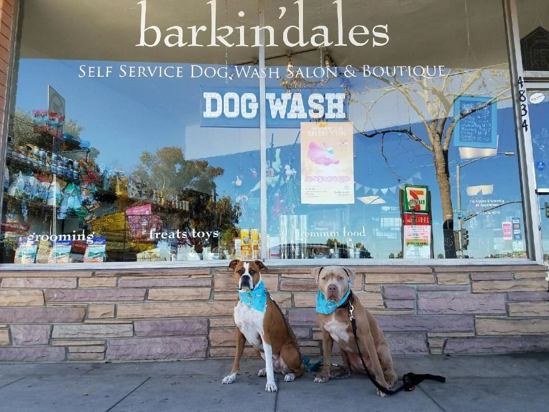 Barkindales dog wash boutique dog wash grooming solutioingenieria Gallery