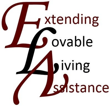 Extending Lovable Living Assistance
