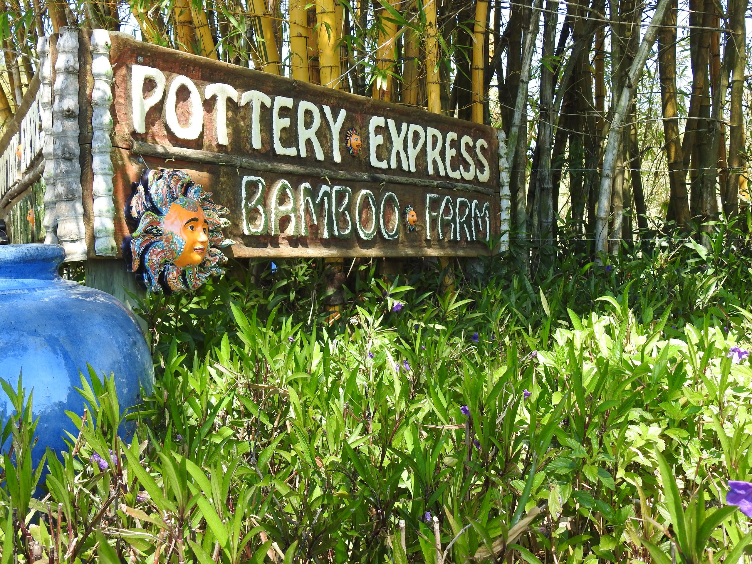 Bamboo | Pottery Express LC