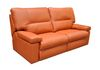 Dylan Reclining Loveseat (202M-02-O): Call for Pricing!