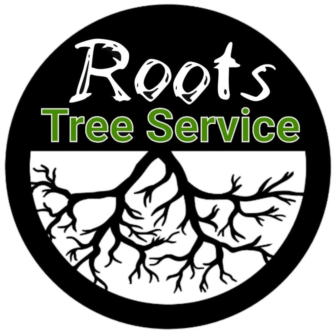 Tree Service Lake Geneva, WI - ISA Certified Arborist ...