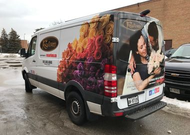 Vehicle graphics and wrap