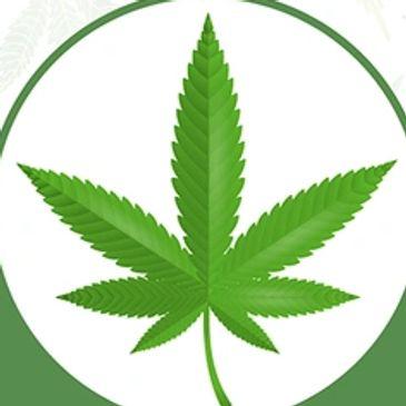 Medical Marijuana in Santa Barbara, California - Santa