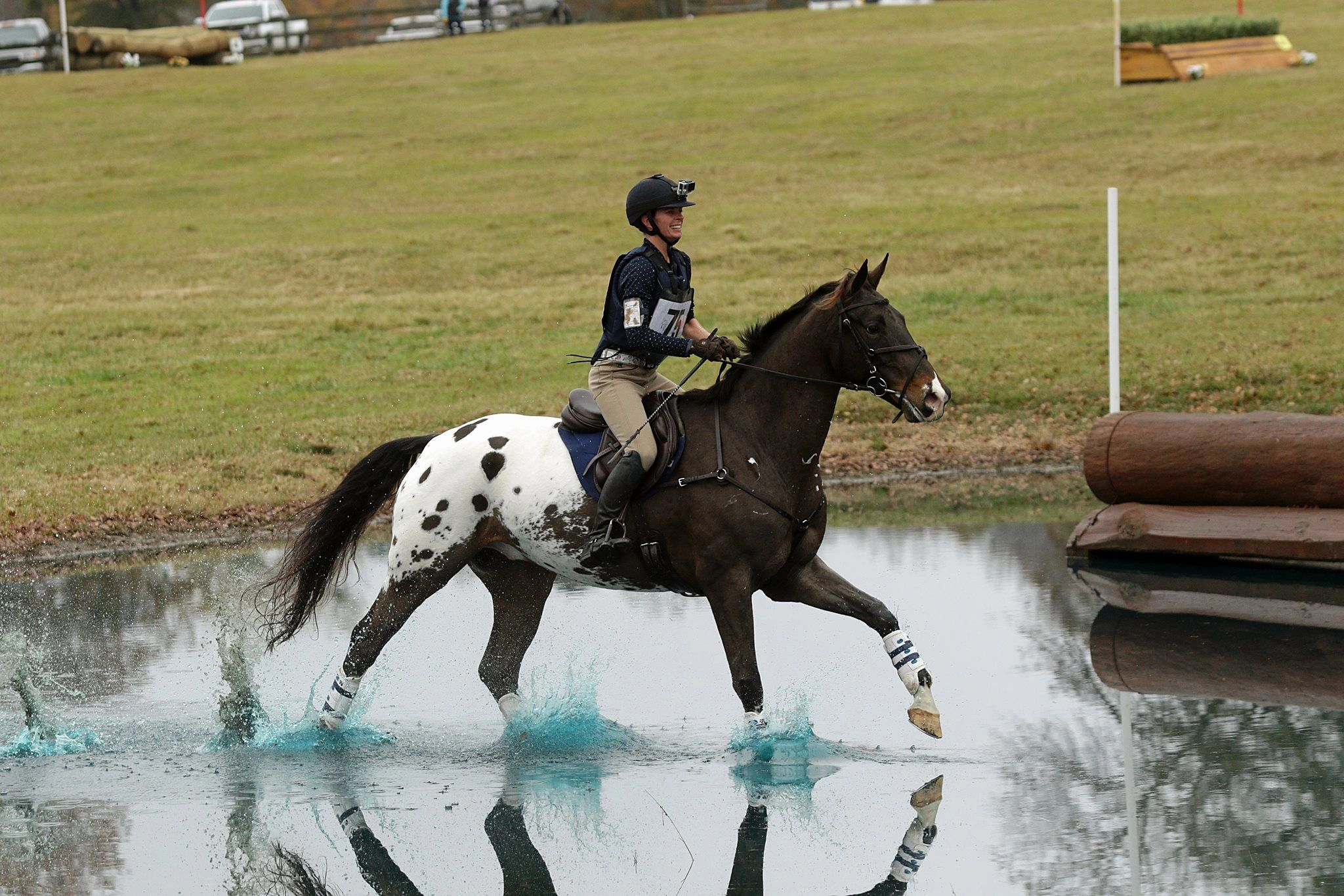 Believe It Or Not | Rugby Creek Sport Horses