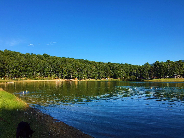 Stoney Creek Resort and Campground
