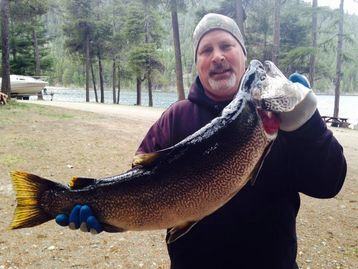 State Record Tiger Trout caught in May of 2015. 18.5lbs 23 inches long.