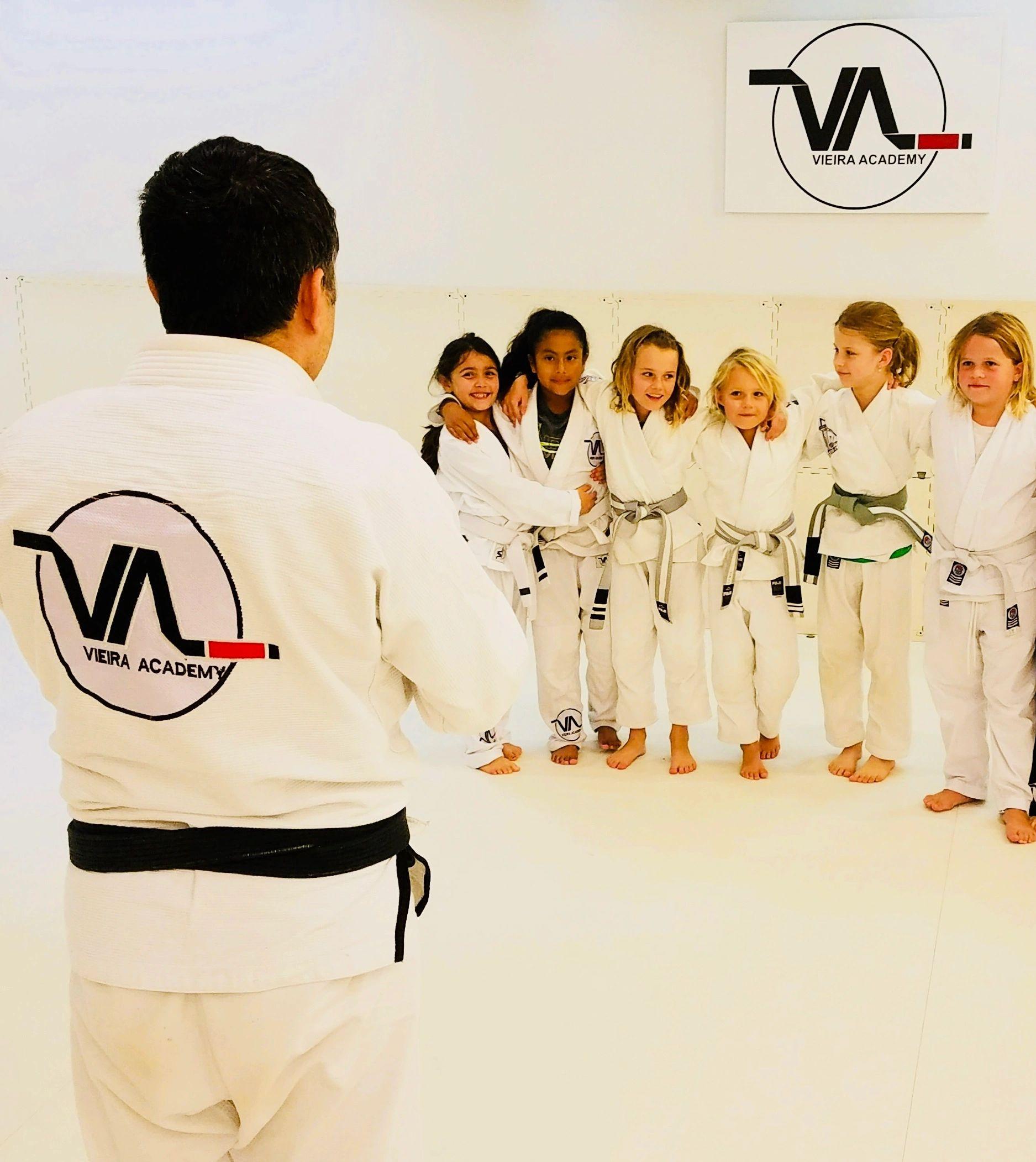 Vieira Martial Arts Academy Sarasota FL