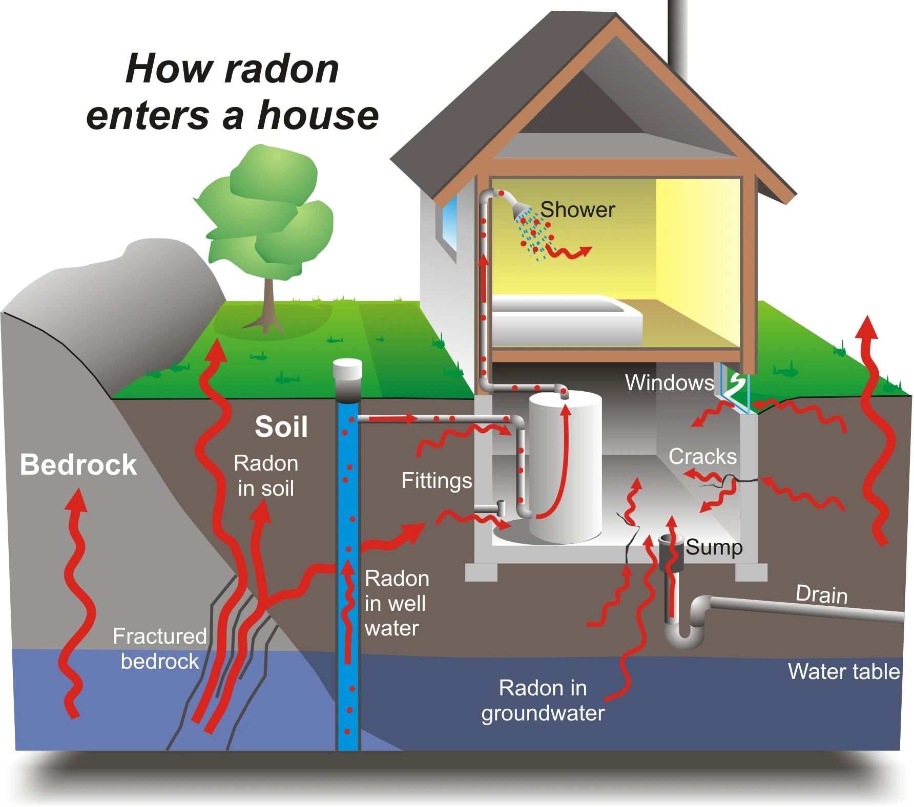 Purchasing a house with radon. What you need to recognize. 8f45c186-b34a-4c62-953a-3b40e87cc592