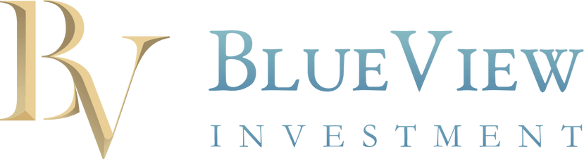 BlueView Investment