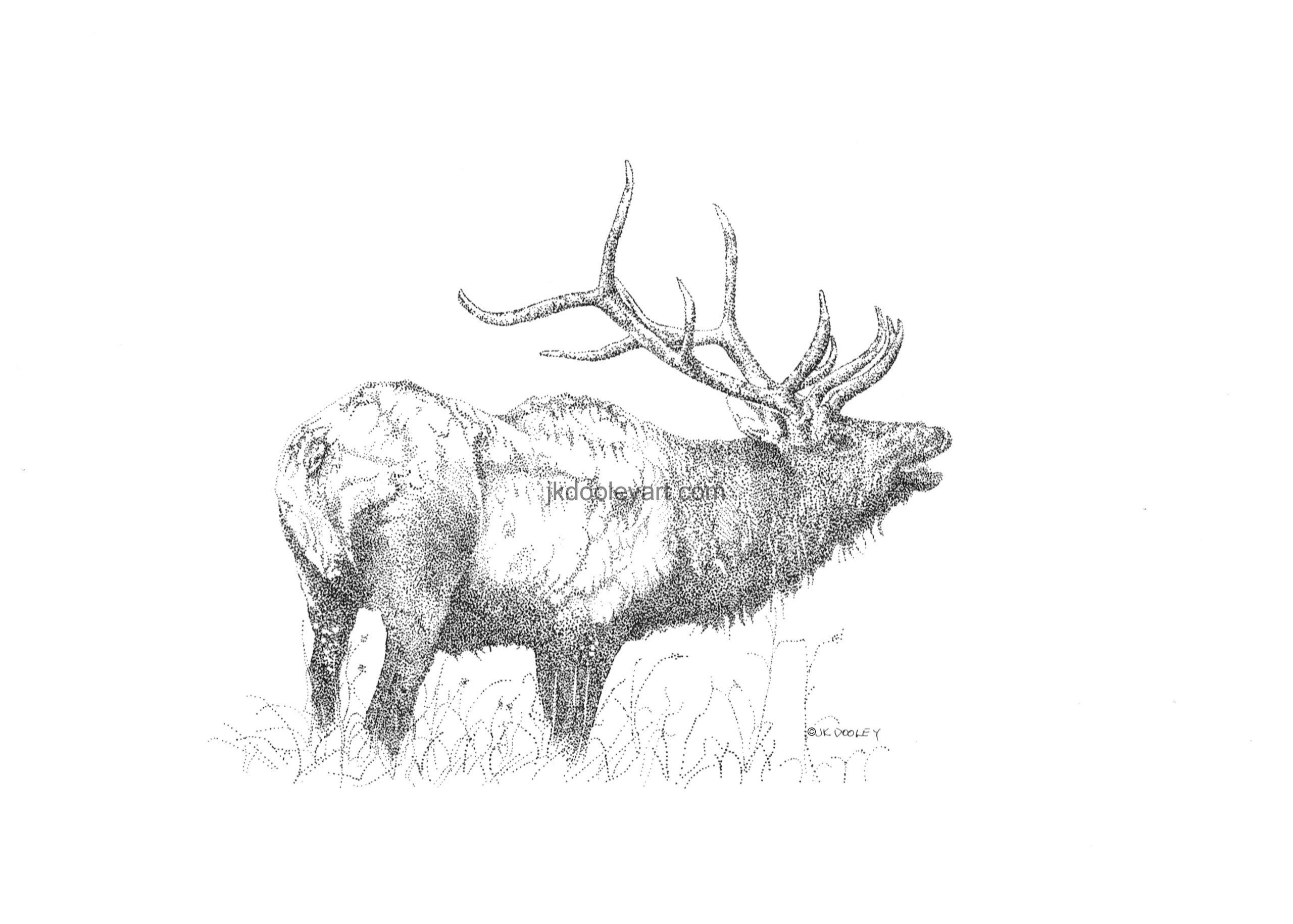 Line Drawing Deer : Commercial deer processors what you need to know