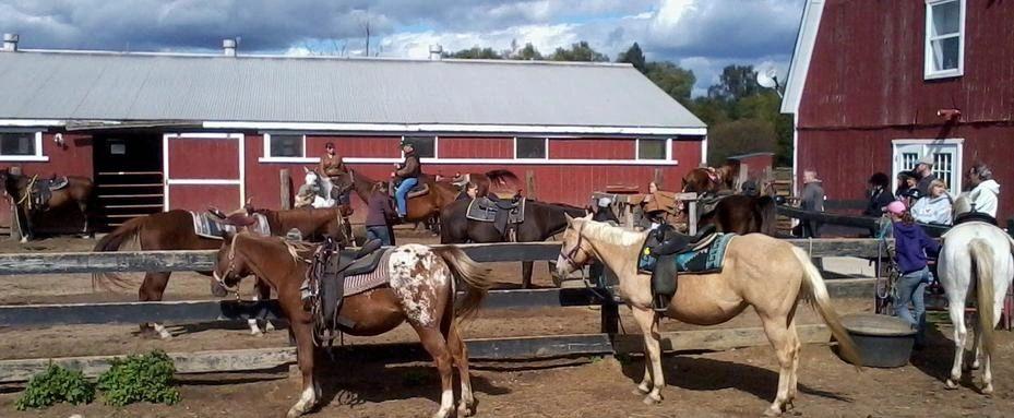 BRIGHTON RECREATION RIDING STABLE - Horseback Riding, Riding Stable