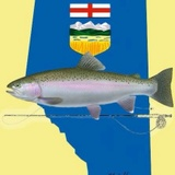 Alberta Competitive Fly Fishing