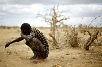 East Africa Drought and Famine