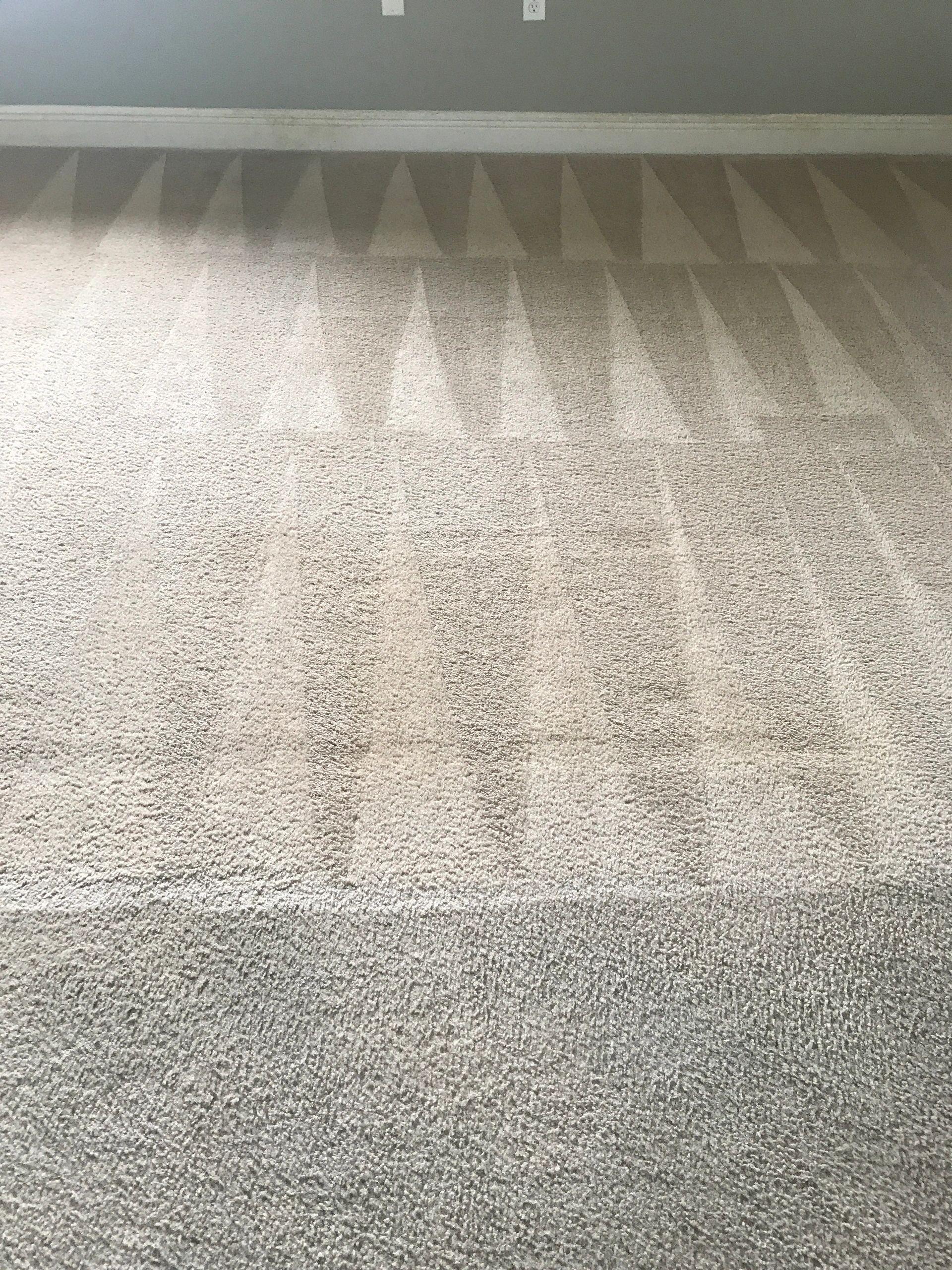 Carpet Steam Cleaning Kissimmee Carpet Vidalondon