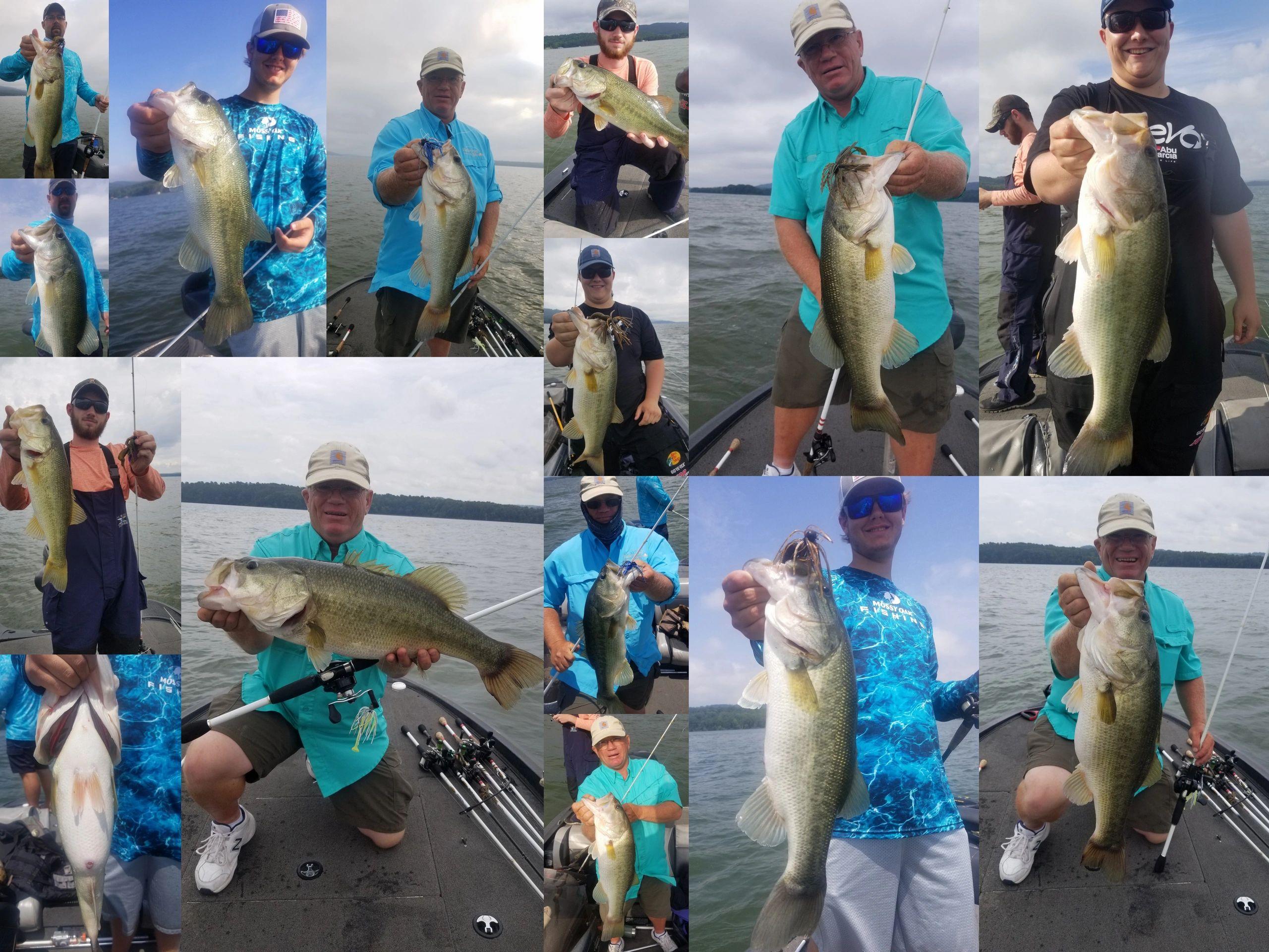MidSouth Bass Guide - Fishing Reports, Fishing, Bass Guide