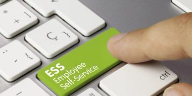 D365 Employee Self-Service Software, Time and Attendance for Australian businesses