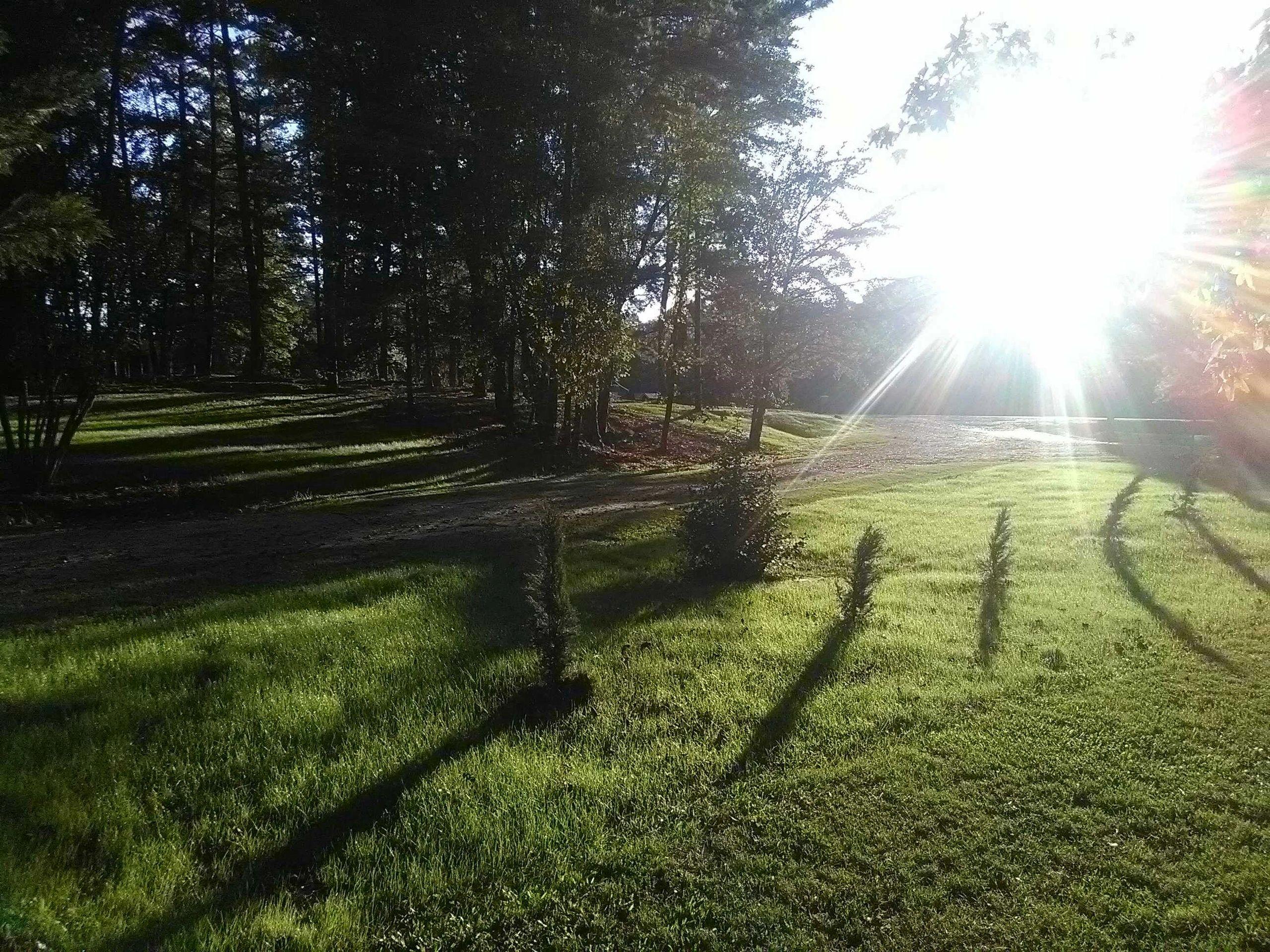 Rolling Hills Village - Mobile Home Park - Morris, Alabama