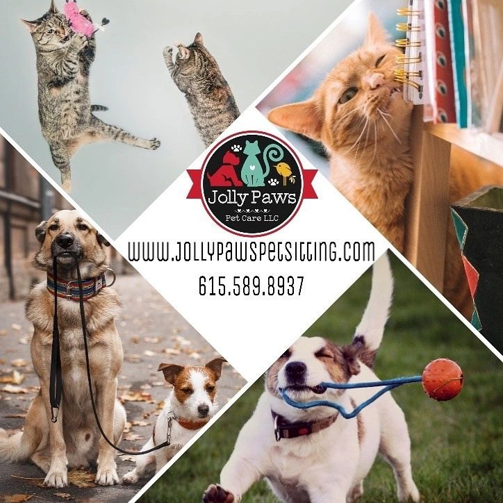 F A Q 's | Jolly Paws Pet Care