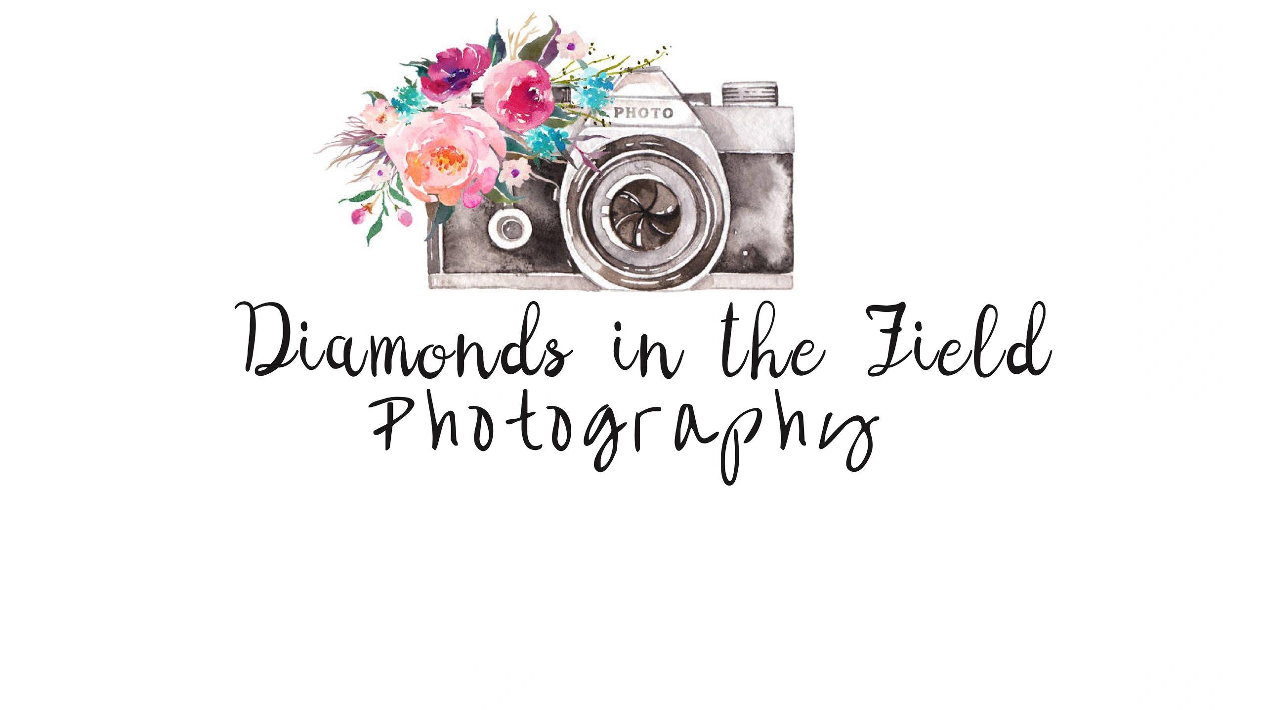 Diamonds in the Field Photography - Photographer - El Paso, Illinois