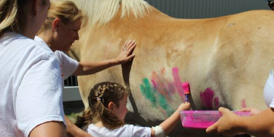 painting, horse, pal-o-mine equestrian, therapeutic riding, adaptive riding, speech in motion