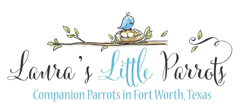 Information | Laura's Little Parrots
