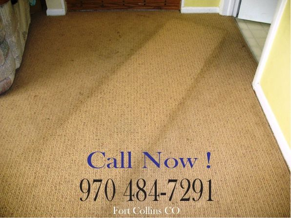 Carpet Cleaning Foothillssteamcarpetcleaners Com