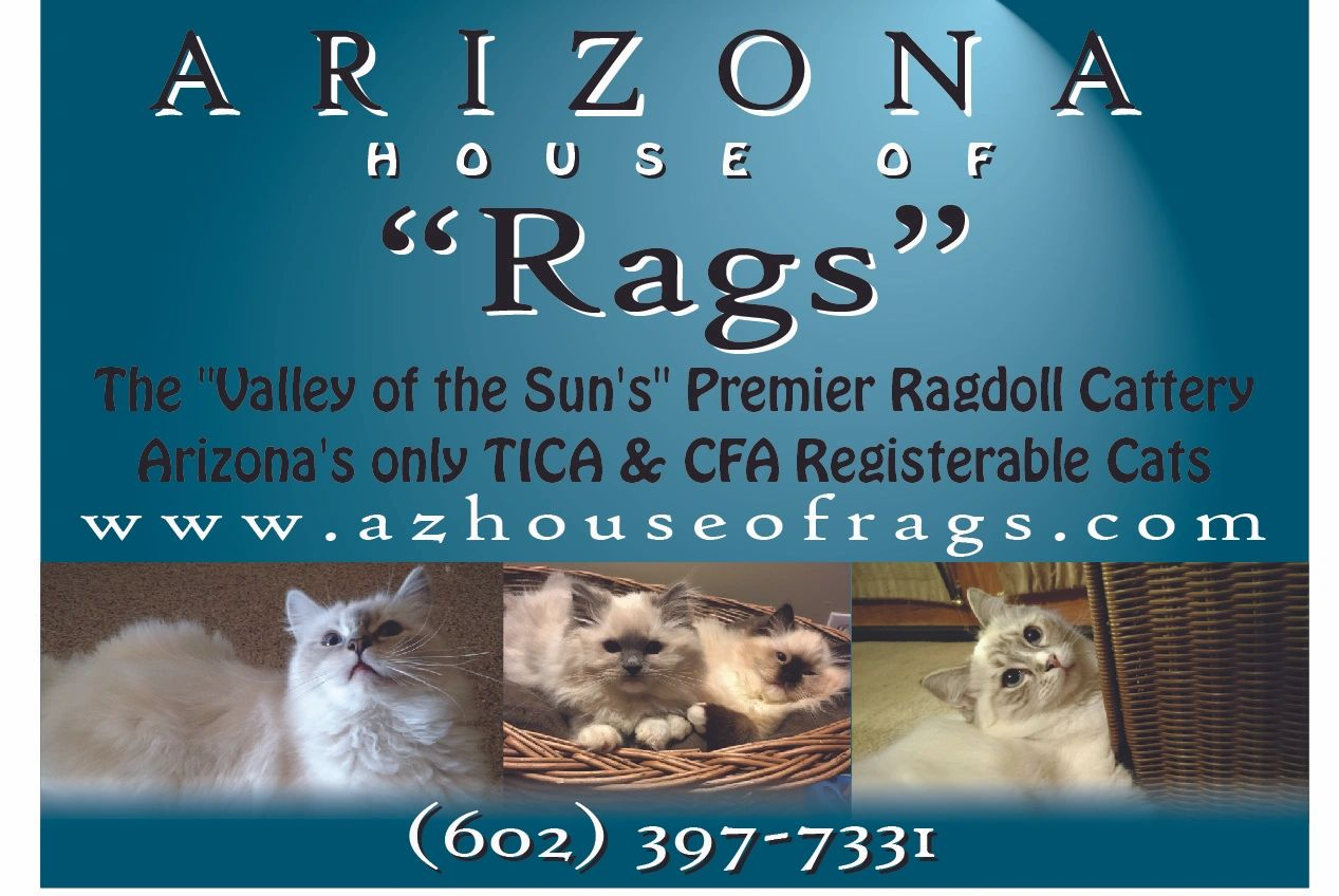 the breed standards arizona u0027s house of rags