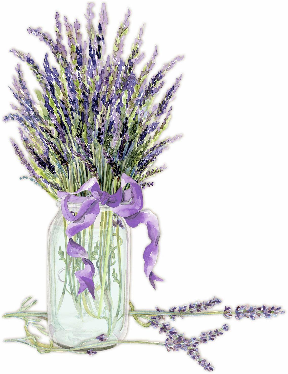 Hidden Spring Lavender