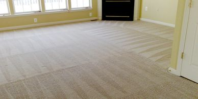 Clean carpets in the house