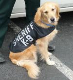 Reflective SHERIFF K-9 ID Dog Vest