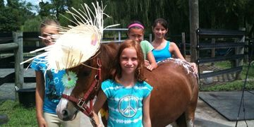 horse riding, horse boarding, horse farm, horse stables, riding lessons, pony birthday party, horses