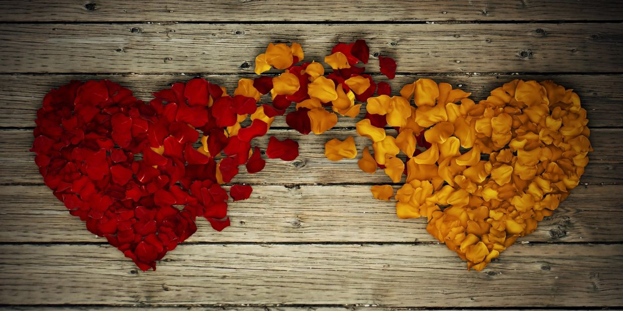 Heart shapes made from flower petals intertwining.