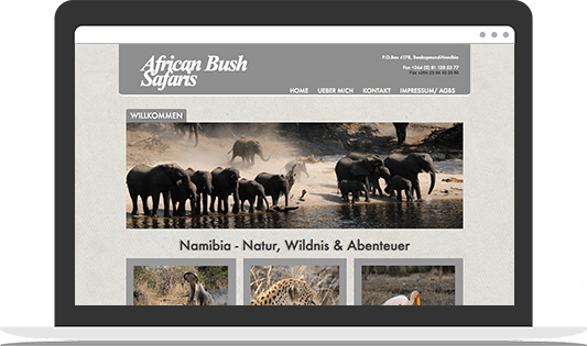 casestudy africanbushsafaris