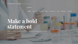 Velux Pharmaceutical Company WordPress Theme