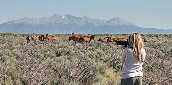photographer workshop and tours of New Mexico and Southern Colorado. Specializing in all skill level