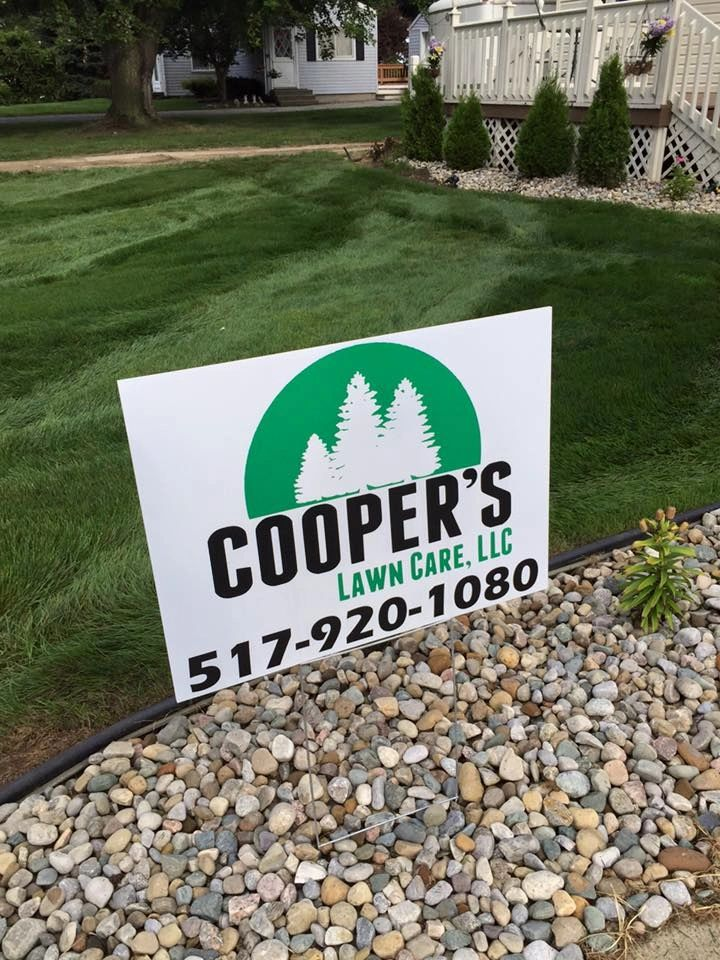 lawn grubs life cycle coopers lawn care llc