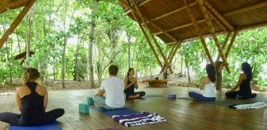 Yoga and Surf Retreat