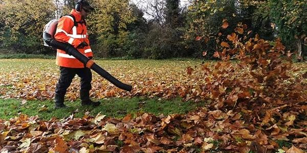 Leaf Clearance services