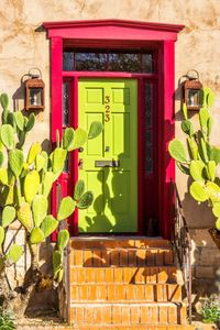 Photo of prickly pear surrounding green door in El Presidio Historic District.  Shadows of on door.