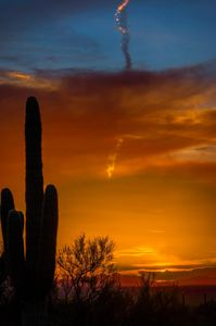 Photo of Bright orange clouds, blue sky and golden contrail with saguaro cactus in foreground