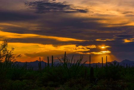 Photo of sunset in Tucson Mountains shows desert in foreground with beams shining through the clouds