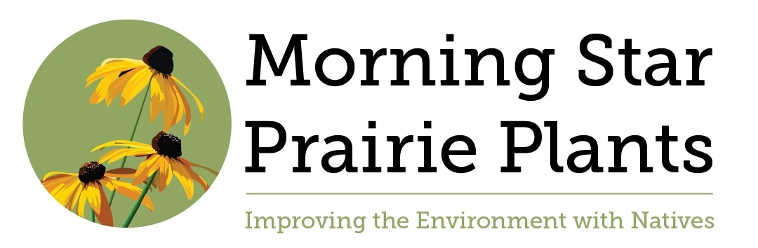 Morning Star Prairie Plants